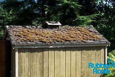 Prep your Shed Roof